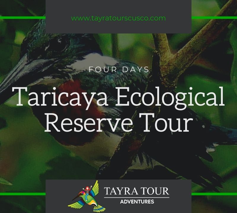 Taricaya Ecological Reserve Tour