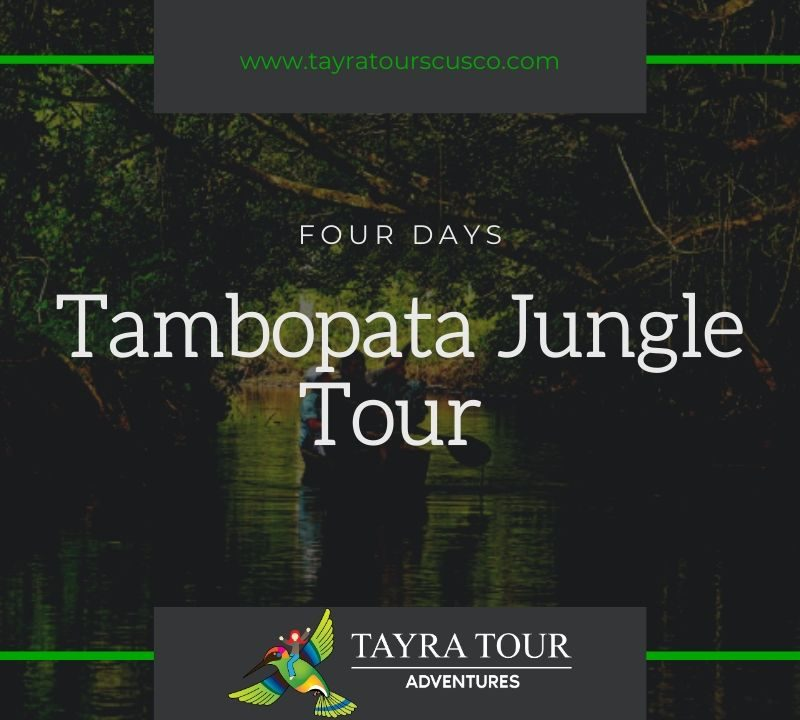 Tambopata Jungle TOur