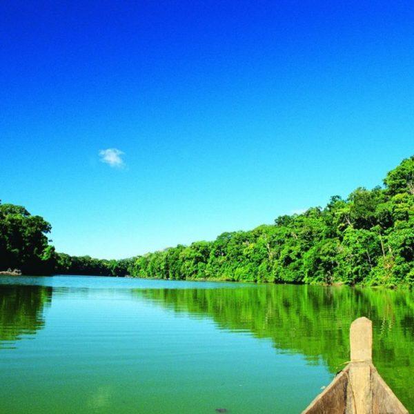 Tambopata, Manu